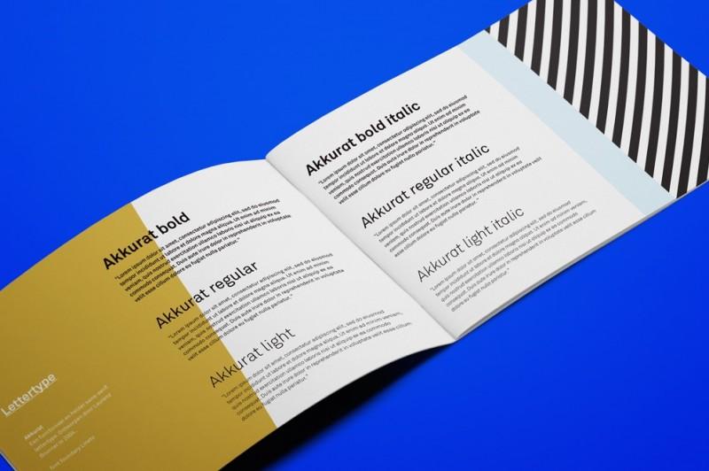 huisstijlhandboek_lettertype